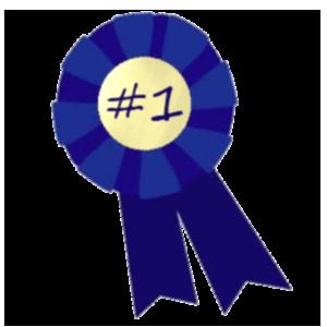 2013: Best Overall Refrigerator