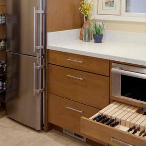 Stainless and Contemporary Design for Kitchens
